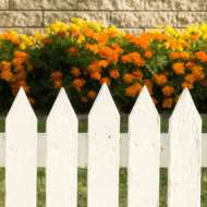 Legacy Fence : My services are designed to tackle even the most complex projects.. We do Vinyl Fences, Wood Fences, Chainlink Fences, Iron Fences, Gates, Gate Repair, Fence Repair, and More!